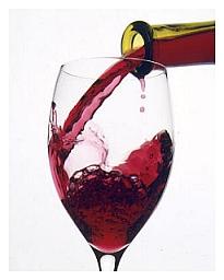 Wijn Ter Aar - Nieuwkoop