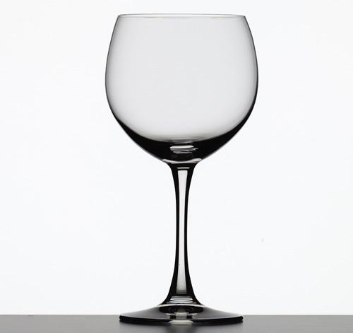 Gin Glas Ballon huren Ter Aar - Nieuwkoop