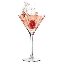Cocktailglas huren Ter Aar - Nieuwkoop